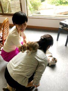 小松カウンセラー 猫 笑う