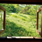 ツリーハウス 窓