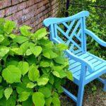 ベンチと庭園